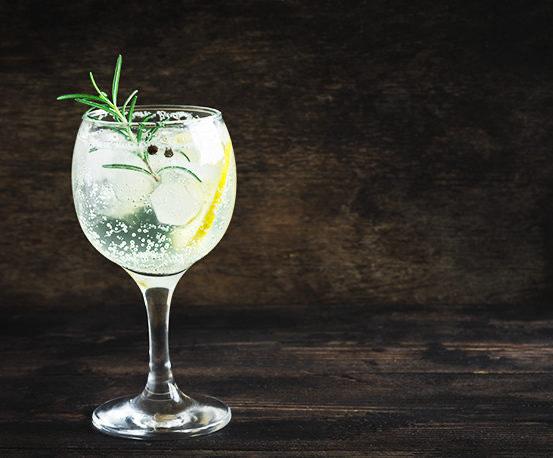 Gin Tonic Receta